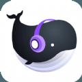 音籁app